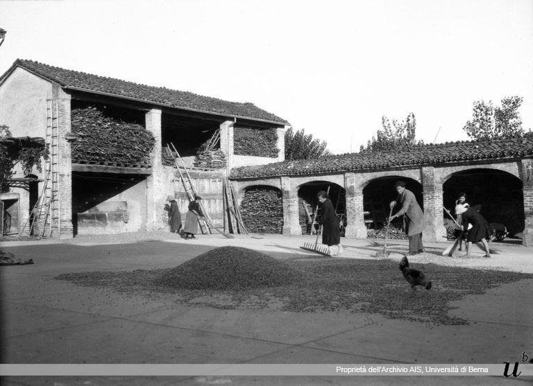 Paul Scheuermeier. Radunare il grano, Pescarolo (CR), 1931