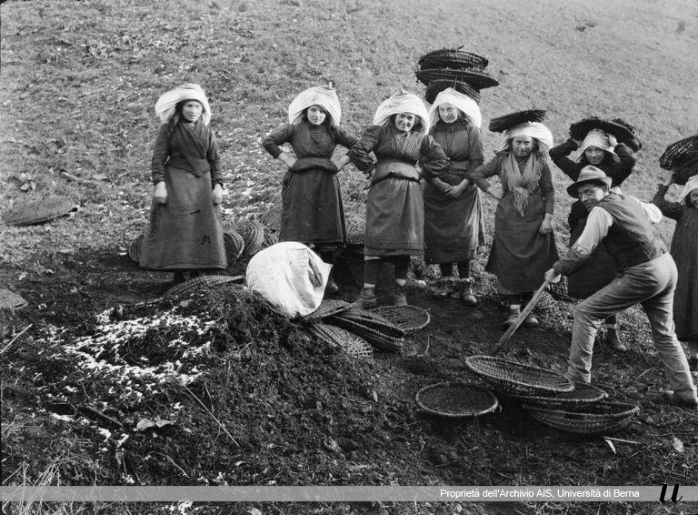 Paul Scheuermeier. Concimazione del prato, Bagolino (BS), 1920
