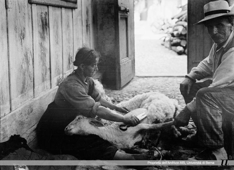 Paul Scheuermeier. Tosare la pecora, Germasino (CO), 1920